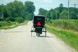buggy of faith, Michigan