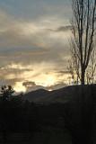 Evening Light1.jpg