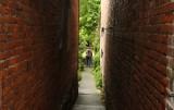 Garden Alley.jpg