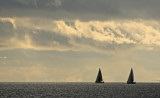 Evening sails.jpg