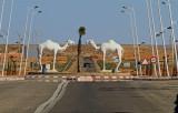 Dromedar Western Sahara