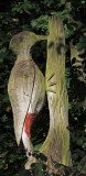 Wooden Woodpecker