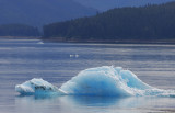 Alaska-11-1.jpg