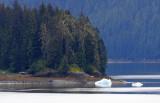 Alaska-12-1.jpg