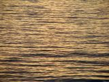 Sea texture 2