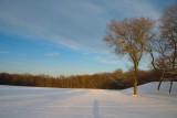 X-C skiing in Brown Deer Park