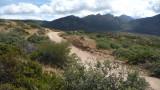 Four Peaks road