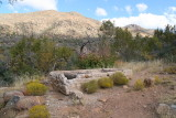 Old trough at Cline Cabin site