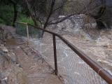 February 12 flood at Boyce Thompson Arboretum. 2005