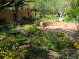Demonstration Garden at Boyce Thompson Arboretum