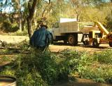 Hauling Fallen Branches out of the Demonstration Garden