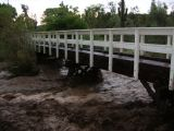 Boyce Thompson Arboretum 2.13 inches of rain on July 27, 2006