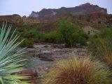 View of Queen Creek from Demonstration Garden
