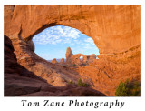 Tom Zane Photography