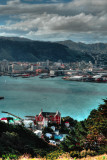 Wellington - From Victoria Hill  197.jpg