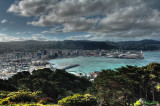 Wellington - From Victoria Hill 175.jpg