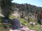 Flume Trail & Tahoe Rim Trail - July 2006