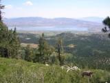 Washoe Lake from Tahoe Rim Trail