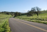 Foxen Canyon Road