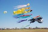 Berkeley Kite Festival - 2009