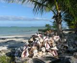 Pestel beach, Acklins
