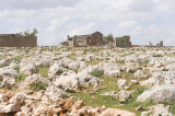 Dead cities from Hama april 2009 8741.jpg