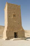 Palmyra apr 2009 9986.jpg
