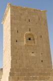 Palmyra apr 2009 9987.jpg