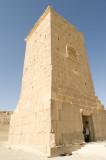 Palmyra apr 2009 9989.jpg
