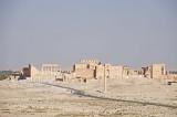Palmyra apr 2009 0019.jpg
