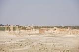 Palmyra apr 2009 0022.jpg