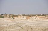 Palmyra apr 2009 0025.jpg