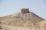 Palmyra apr 2009 0027b.jpg