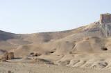 Palmyra apr 2009 0045.jpg