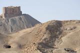 Palmyra apr 2009 0046.jpg