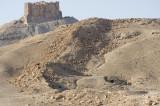 Palmyra apr 2009 0047.jpg