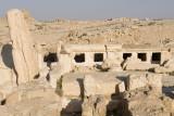 Palmyra apr 2009 0051.jpg