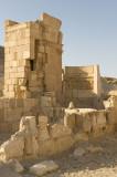 Palmyra apr 2009 0057.jpg