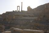 Palmyra apr 2009 0065.jpg