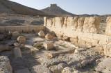 Palmyra apr 2009 0066.jpg