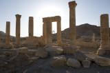 Palmyra apr 2009 0068.jpg