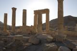 Palmyra apr 2009 0069.jpg