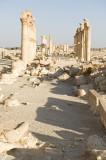 Palmyra apr 2009 0073.jpg