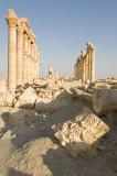 Palmyra apr 2009 0075.jpg