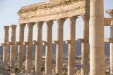 Palmyra apr 2009 0085.jpg