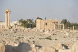 Palmyra apr 2009 0086.jpg
