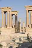 Palmyra apr 2009 0088.jpg