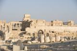Palmyra apr 2009 0092.jpg