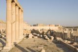 Palmyra apr 2009 0100.jpg