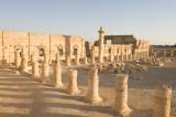 Palmyra apr 2009 0103.jpg